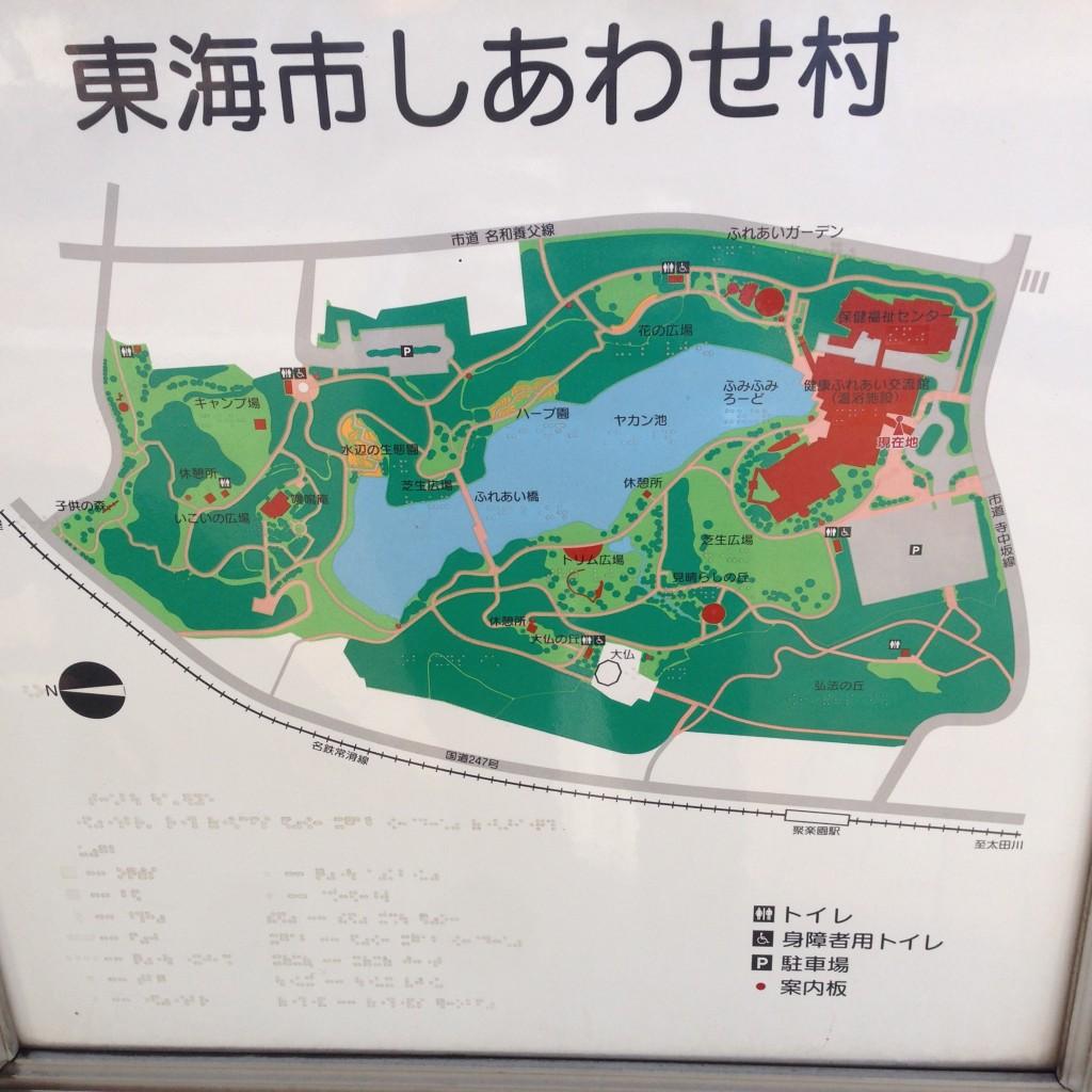 shitami (1)